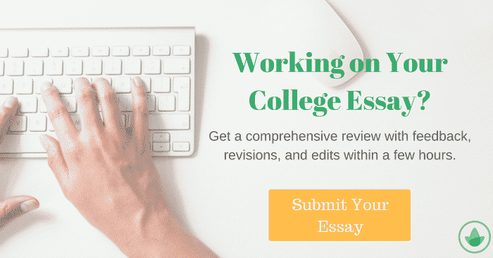 essay writing on internet advantages and disadvantages   essay mojo essay writing on internet advantages and disadvantages